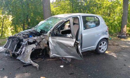 Toyota uderzyła w drzewo, kierowca walczy o życie