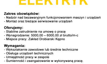 Praca: elektryk