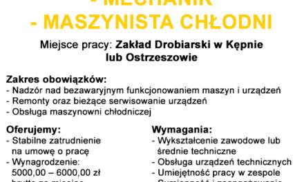 Firma DROP S.A. w Ostrzeszowie zatrudni pracowników!
