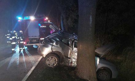 22-latek uderzył w drzewo