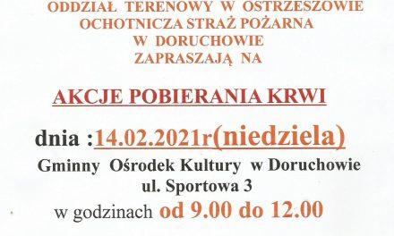 Zbiórka krwi w Doruchowie