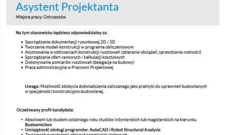 Praca: Asystent Projektanta
