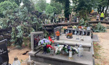 Ostrzeszowski cmentarz po nawałnicy