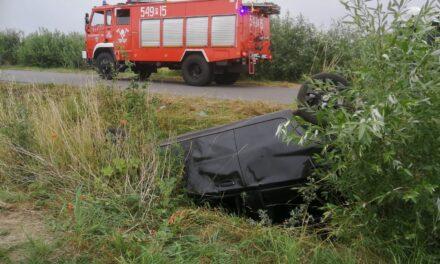 Kaliszkowice Kaliskie: Samochód wpadł do rowu